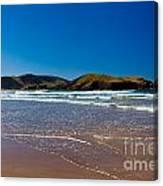 Curio Bay On South Coast Of New Zealand South Island Canvas Print
