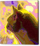 Curiosity And The Cat 2 Canvas Print