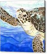 Curious Sea Turtle Canvas Print