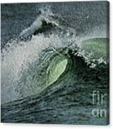 Curl Of The Wave Canvas Print