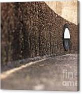 Curved Perspective Canvas Print