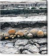 Cushion Bush Dam Canvas Print