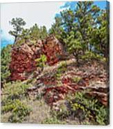 Custer State Park Ecology Canvas Print