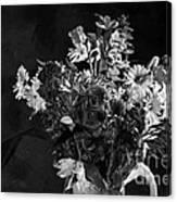 Cut Flowers In Monochrome Canvas Print