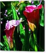 Cut Flowers Canvas Print