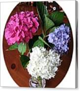 Cut Hydrangeas Canvas Print
