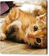 Cute Be Mine Canvas Print