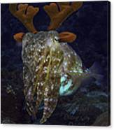 Cuttlefish With Reindeer Hat Canvas Print