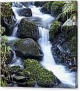 Cwm Gwaun Waterfall Canvas Print