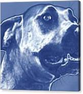 Cyanotype Dog Canvas Print
