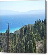 Cypress 2 Canvas Print