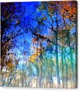 Cypress Fog 3 Canvas Print