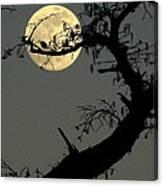 Cypress Moon Canvas Print