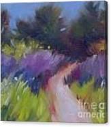 Cypress Passage Canvas Print