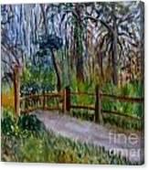 Cypress Trail At Loxahatchee Canvas Print