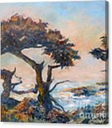 Cypress Tree Coast Canvas Print