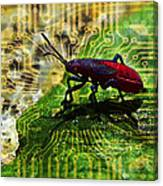 D Bugg Canvas Print