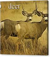 D Is For Deer Canvas Print