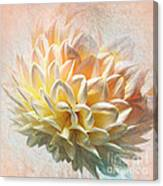 Dahlia Art Canvas Print