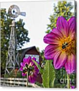 Dahlia Bee And Windmill Canvas Print