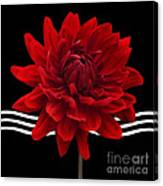 Dahlia Flower And Wavy Lines Triptych Canvas 2 - Red Canvas Print