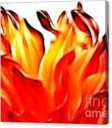 Dahlia On Fire Canvas Print