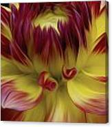 Dahlia Red Yellow Canvas Print