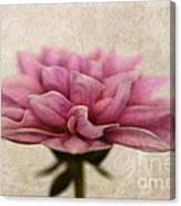 Dahlietta Amy Textured Canvas Print