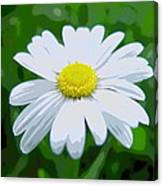 Daisey Flower - Looks Like A Painting Canvas Print