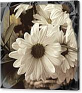 Daisies And Charcoal Canvas Print