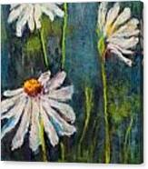 Daisies For Mom Canvas Print