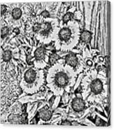 Daisies In Relief Canvas Print