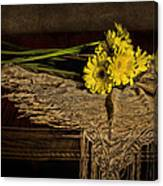 Daisies On The Table Canvas Print
