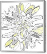 Daisies Three Canvas Print