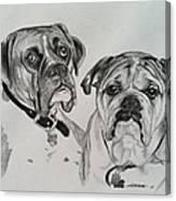 Daisy And Duke Canvas Print