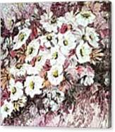 Daisy Blush Remix Canvas Print