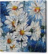 Daisy Cluster Canvas Print