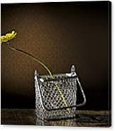 Daisy In A Chain Basket Canvas Print