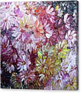 Daisy Mix   Sold Canvas Print