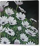 Daisy Mum Canvas Print