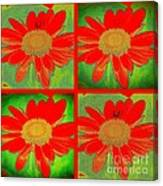 Daisy Perspective Collage Canvas Print