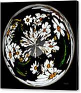 Daisy Sphere Canvas Print
