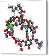Dalbavancin Glycopeptide Antibiotic Drug Canvas Print