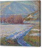 Dalefield. Queenstown Nz. Canvas Print