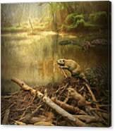 Dam Beavers Canvas Print
