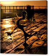 Dance Dance Dude Canvas Print