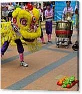 Dance Troupe Performs Chinese Lion Dance Singapore Canvas Print