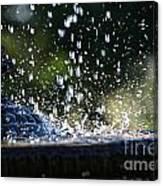 Dancing Droplets Canvas Print