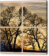 Dancing Forest Trees Picture Window Frame Photo Art View Canvas Print