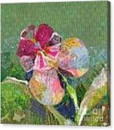 Dancing Orchid IIi Canvas Print